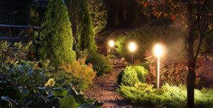 garden winter night