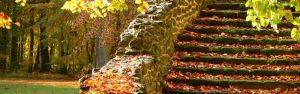 autumn garden storage steps