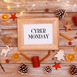 cyber monday storage offer