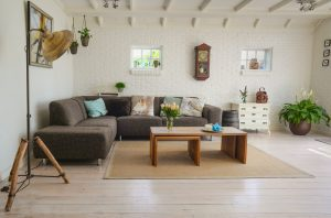 Spacious living room with house plants - Beyond Storage