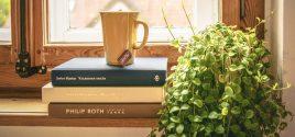 Indoor Jungle: How Houseplants can brighten up your home & health