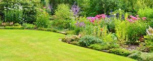 Colourful flower bed - Get your garden bright for summer - Beyond Storage