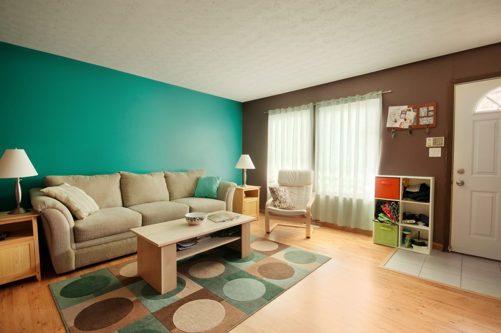Teal and Brown Family Room - clear from clutter - Beyond Storage