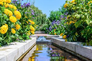 Vibrant water feature - Brighten up your Garden! - Beyond Storage