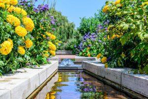 Vibrant water feature - Brighten up your Garden! - Beyond Storage